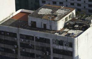 GARY STOKES HONG KONG SHARK FIN